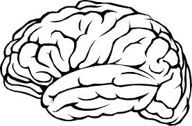 Hjerne i stiliseret form