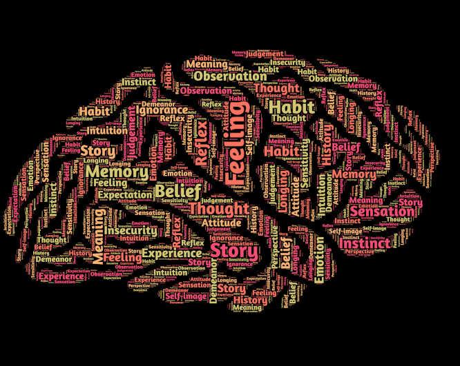 De kognitive deficitter 1