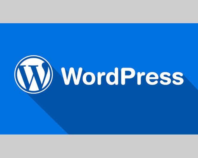 Sikkerhed i WordPress 3